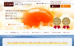 野澤養鶏 吉野こだわり卵